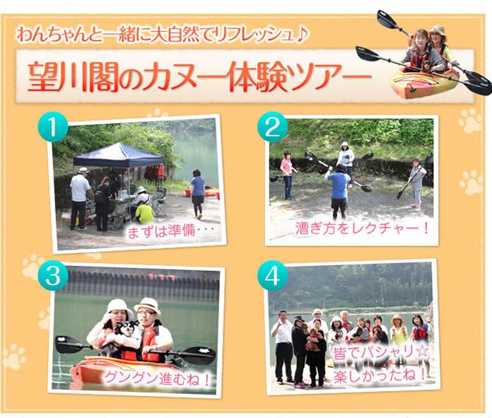 わんちゃんと一緒に大自然でリフレッシュ♪ 望川閣のカヌー体験ツアー