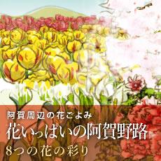阿賀周辺の花ごよみ 花いっぱいの阿賀野路 8つの花の彩り